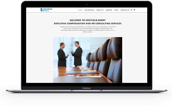Sheffield Barry is one of the best compensation consulting firms for streamlined compensation strategy development and analysis.